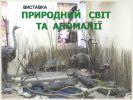 b_150_100_16777215_00_images_10203.jpg
